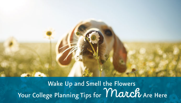 College Planning Tips for March